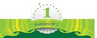 1-kolodec.ru